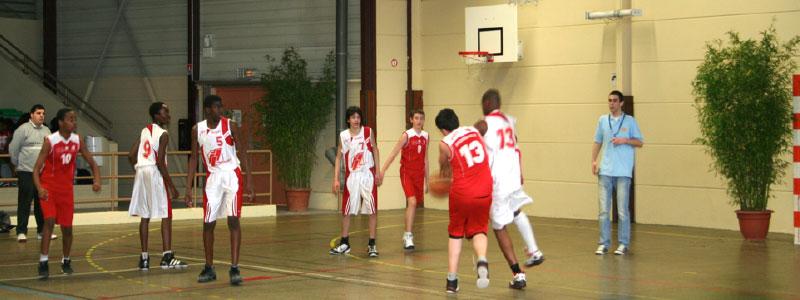 SGS-basket